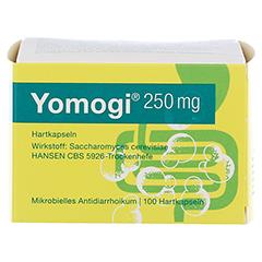 Yomogi 250mg 5Billionen Zellen 100 Stück - Vorderseite