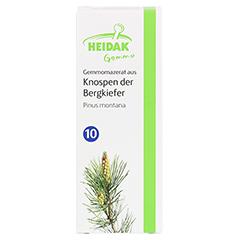 GEMMO Pinus montana Gemmomazerat Spray 30 Milliliter - Vorderseite