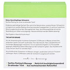 GEGENGIFT Detox Schwamm 1 Stück - Rückseite
