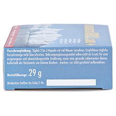 ANTARKTIS Krill Care Kapseln 60 Stück - Rechte Seite