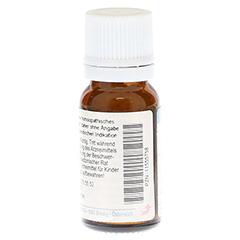 THUJA OCCIDENTALIS D 4 Globuli 10 Gramm N1 - Rückseite
