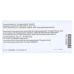 CEREBELLUM GL D 30 Ampullen 10x1 Milliliter N1 - Rückseite