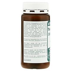 TEUFELSKRALLE 225 mg Extrakt Kapseln 200 Stück - Rechte Seite