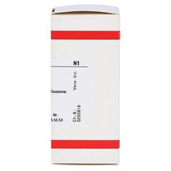 DIOSCOREA VILLOSA D 3 Tabletten 80 Stück N1 - Rechte Seite
