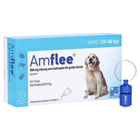 AMFLEE 268 mg Spot-on Lsg.f.große Hunde 20-40kg + gratis Amflee Adresskapseln 3 Stück