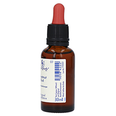 BACHBLÜTEN Chestnut Bud Healing Herbs Tropfen 30 Milliliter - Linke Seite