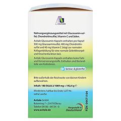 Avitale Glucosamin 500 mg + Chondroitin 400 mg + gratis Teufelskrallen Gel 180 Stück - Rechte Seite
