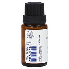 BACHBLÜTEN Holly Globuli Healing Herbs 15 Gramm - Rechte Seite