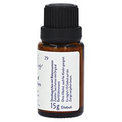 BACHBLÜTEN Star of Bethl Globuli Healing Herbs 15 Gramm - Linke Seite