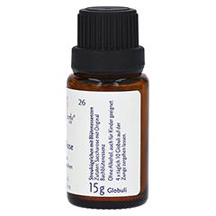 BACHBLÜTEN Rock Rose Globuli Healing Herbs 15 Gramm - Linke Seite