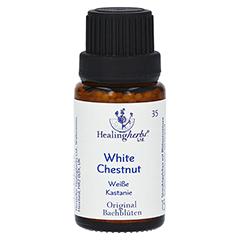 BACHBLÜTEN White Chestnut Globuli Healing Herbs 15 Gramm