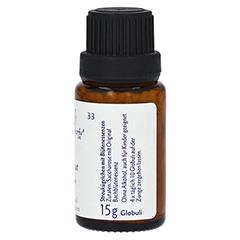 BACHBLÜTEN Walnut Globuli Healing Herbs 15 Gramm - Linke Seite