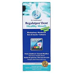 REGULATPRO Dent Healthy Mouth Mundspülung 350 Milliliter - Vorderseite
