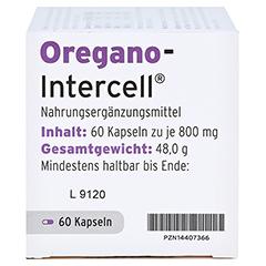 OREGANO-INTERCELL magensaftresistente Weichkapseln 60 Stück - Rechte Seite