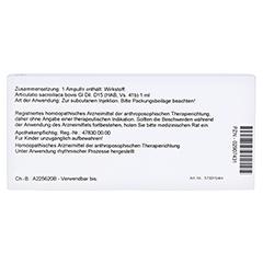 ARTICULATIO sacroiliaca GL D 15 Ampullen 10x1 Milliliter N1 - Rückseite