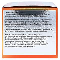 Gelenknahrung Pro Hyaluron Orthoexpert Pulver 30x12.3 Gramm - Rechte Seite