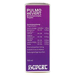 PULMO HEVERT Bronchialcomplex Tropfen 100 Milliliter N2 - Linke Seite