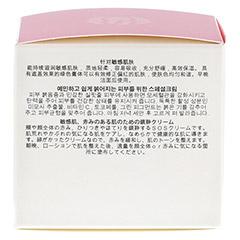 Dr. Schrammek Rosea Calm Cream + gratis ENERGY POWER Ampulle 50 Milliliter - Rechte Seite