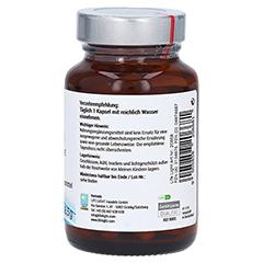 L-ARGININ 500 mg Kapseln 60 Stück - Linke Seite