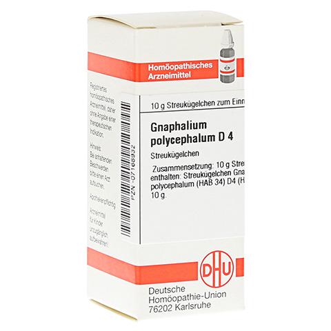 GNAPHALIUM POLYCEPHALUM D 4 Globuli 10 Gramm N1