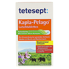 TETESEPT Kapla-Pelago Lutschtabletten 20 Stück - Vorderseite