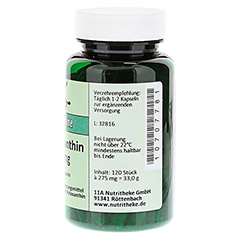 ASTAXANTHIN 4 mg Kapseln 120 Stück - Rechte Seite