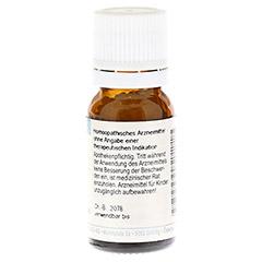STRYCHNOS nux-vomica D 6 Globuli 10 Gramm - Rückseite