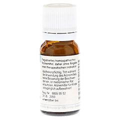 HYPERICUM PERFORATUM C 30 Globuli 10 Gramm - Rückseite