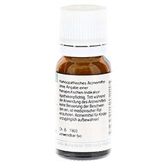 FERRUM PHOSPHORICUM C 30 Globuli 10 Gramm N1 - Rückseite