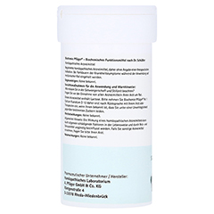 BIOCHEMIE Pflüger 1 Calcium fluoratum D 12 Pulver 100 Gramm N2 - Rechte Seite