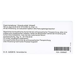 NERVUS VAGUS GL D 15 Ampullen 10x1 Milliliter N1 - Rückseite