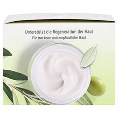 OLIVENÖL Körper-Balsam 250 Milliliter - Rechte Seite