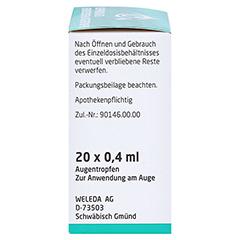 EUPHRASIA D 3 Einzeldosen-Augentropfen 20x0.4 Milliliter N1 - Rechte Seite