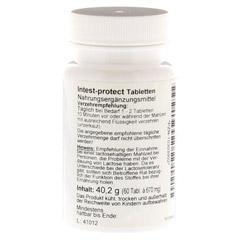 INTEST protect Tabletten 60 Stück - Linke Seite