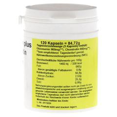 GLUCOSAMIN+CHONDROITIN Kapseln 120 Stück - Rechte Seite