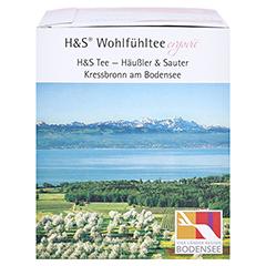 H&S Hibiskusblüte Filterbeutel 20 Stück - Rechte Seite
