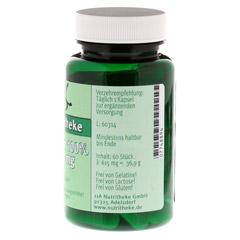 CREATIN 100% 500 mg Kapseln 60 Stück - Rechte Seite