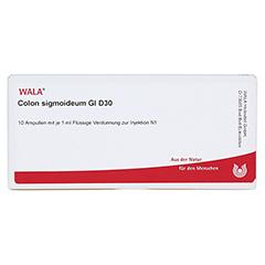 COLON SIGMOIDEUM GL D 30 Ampullen 10x1 Milliliter N1 - Vorderseite