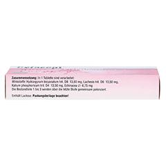 CEFASEPT Echinacea Komplex Tabletten 20 Stück N1 - Oberseite