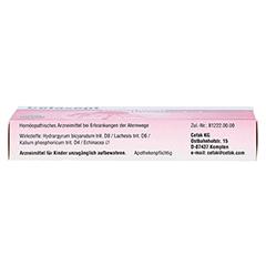 CEFASEPT Echinacea Komplex Tabletten 20 Stück N1 - Unterseite