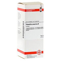 POTENTILLA ANSERINA Urtinktur 50 Milliliter N1