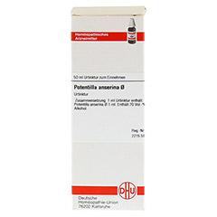 POTENTILLA ANSERINA Urtinktur 50 Milliliter N1 - Vorderseite