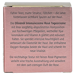 medipharma Olivenöl Intensivcreme Rose Tagescreme 50 Milliliter - Rückseite