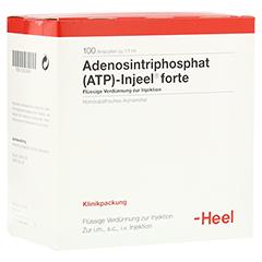 ATP Injeel forte Ampullen 100 Stück N3