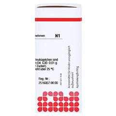 NATRIUM CHLORATUM C 30 Globuli 10 Gramm N1 - Rechte Seite