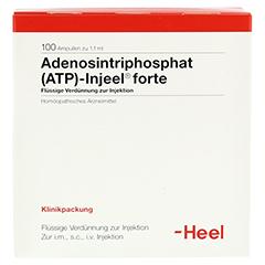 ATP Injeel forte Ampullen 100 Stück N3 - Vorderseite