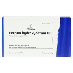 FERRUM HYDROXYDATUM D 6 Ampullen 8x1 Milliliter N1 - Vorderseite