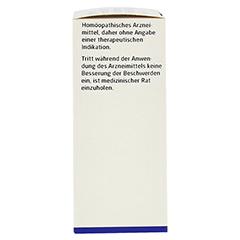 MYRRHA comp.D 8/Belladonna Radix D 10 aa Dilution 50 Milliliter N1 - Linke Seite