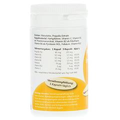 PROPOLIS IMMUNO Forte+Vitamine Kapseln MediFit 60 Stück - Rechte Seite