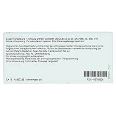 UTERUS GL D 6 Ampullen 10x1 Milliliter N1 - Rückseite